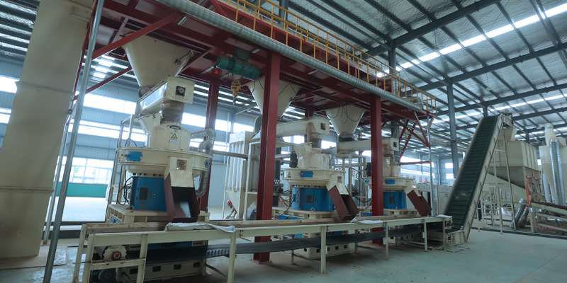 Jiangsu 20t/h Wood Pellet Production Line
